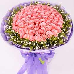 66枝粉玫瑰/爱你到永远