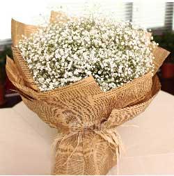 时刻牵挂着你/29枝红色玫瑰:真诚的祝福你幸福、快乐永远/满天星鲜花