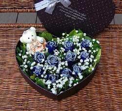 黛安娜玫瑰9枝/你是我的唯一:11枝蓝色玫瑰/心的呼唤
