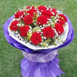 香槟玫瑰20枝/祝您身体健康,幸福永远!:11枝红色康乃馨/快乐心情
