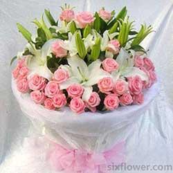 22枝各色太阳花/节日快乐:29枝粉玫瑰/永远的祝福