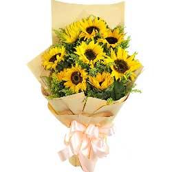 我爱您妈妈/5枝百合玫瑰:9枝向日葵/灿烂的笑