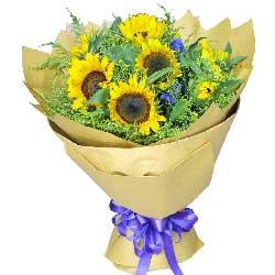 满满的祝福/11枝向日葵19枝桔梗:爱您的心不变/9枝向日葵