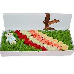 8寸圆形欧式蛋糕:与你朝夕相伴/25枝玫瑰花