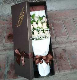 共同去赞美我们的精彩生命/11枝香槟玫瑰