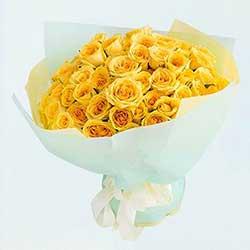 包容/33枝黄玫瑰