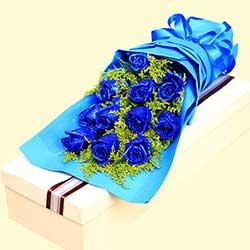 给你我所有的爱/11枝蓝玫瑰礼盒