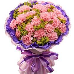 真诚的祝福/19枝粉色康乃馨