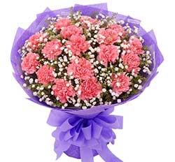22枝各色太阳花/节日快乐:把您放在心里/19枝粉色康乃馨