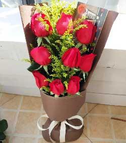 9枝红玫瑰/爱情海