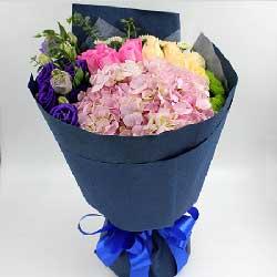 爱你一辈子/11枝粉玫瑰绣球:16枝玫瑰/爱你没有理由