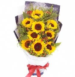 永不腿色的祝福/19枝玫瑰绣球花:9枝向日葵/开怀大笑的心境