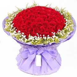 梦你爱你/50枝红玫瑰