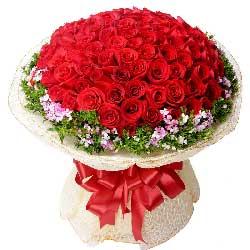 99枝红玫瑰/九九真爱