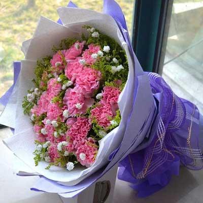 19枝康乃馨/妈妈的关爱