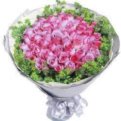 33枝紫玫瑰/花儿告诉你,我爱你!