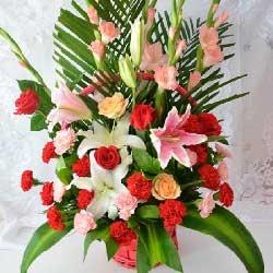 特别的问候/38枝玫瑰:42枝康乃馨百合玫瑰/愿你的每一天都春暖花开