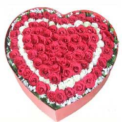 我的生命里不能没有你/19枝蓝色玫瑰:99枝玫瑰/爱意无限,一生阳光