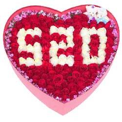 99枝玫瑰礼盒/让我一辈子照顾你好不好!