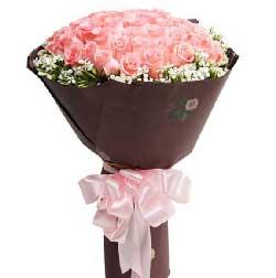 33枝粉玫瑰/愿天天轻轻地咬你的耳朵