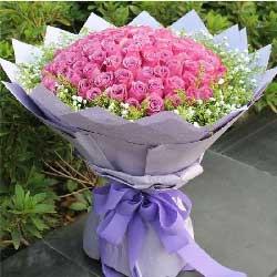 99枝紫玫瑰/你是我一生的最爱