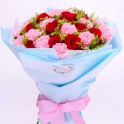 您的爱是崇高的爱/21枝粉色康乃馨玫瑰