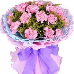 19枝粉色康乃馨/您永远是我的大树