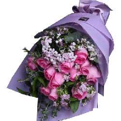 紫玫瑰12枝/忘不了你的微笑