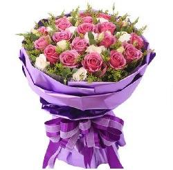 漫天的花絮,是爱的诗句/19枝紫玫瑰