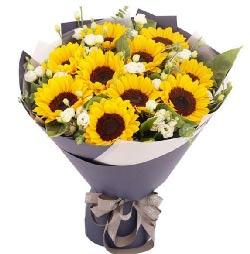 美丽的日子/19枝康乃馨百合:感谢有你,让我的生命如此美丽/0枝向日葵