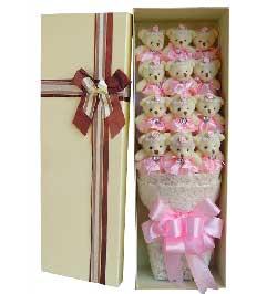 笑容常挂在脸上/12只粉色钻石小熊