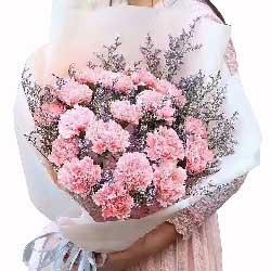 开心一切都好/19枝粉色康乃馨