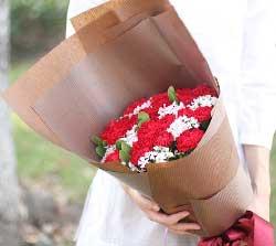 飞花传真情/5枝百合康乃馨:19枝红色康乃馨/我的美好希望送给你