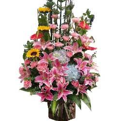 希望你能快乐幸福/6朵百合,20枝粉色康乃馨
