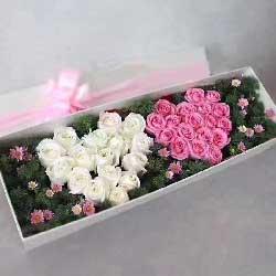 用爱铸造出最完美的未来/33枝玫瑰