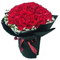 真的好想你/99枝红色玫瑰