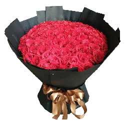 我的全部精力呵护你/99枝红色玫瑰