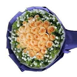 情调/66枝粉红雪山玫瑰:一天比一天更爱你/29枝香槟玫瑰