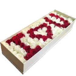 爱是一种享受/99枝玫瑰