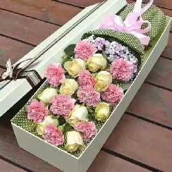 祝你开心/康乃馨+香槟玫瑰