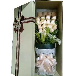 让我领悟爱情/19枝香槟玫瑰礼盒