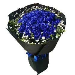 有了你我的世界如此浪漫/21枝蓝玫瑰