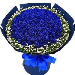 爱的长河/99枝蓝色玫瑰