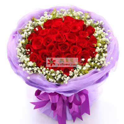 遇到你是我最珍贵的财富/33枝玫瑰