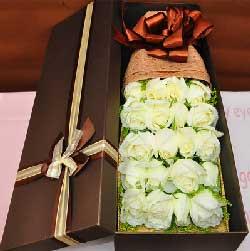 一起筑梦/19枝白玫瑰礼盒