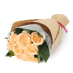 爱你不用怀疑/9枝香槟玫瑰