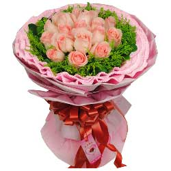 幸福属于我们/19枝戴安娜粉玫瑰