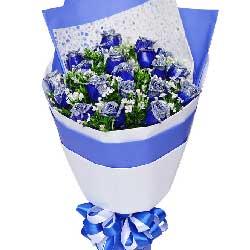 你是我最大福气/19枝蓝色玫瑰
