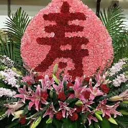 松鹤长春/200枝康乃馨