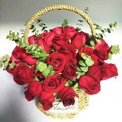 快乐属于你/33枝红色玫瑰花篮